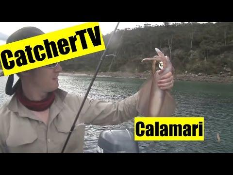 Catcher TV Ep. 2: Southern Calamari On Tasmania's East Coast