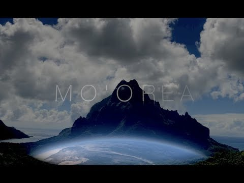 Mo'orea - Diving Adventures