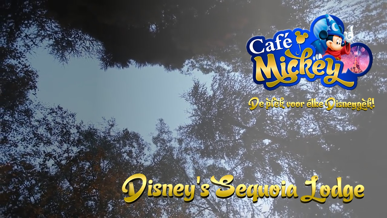 Café mickey • disney's sequoia lodge