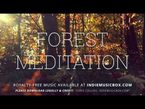 Forest Meditation - Indie Music Box [Royalty-Free Music]
