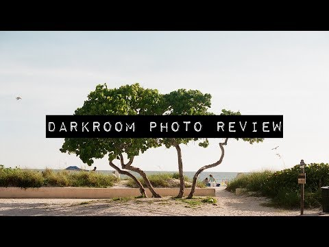 Dark room photo review│Taking a look at my recently developed photos!
