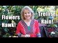 Garden Workday | Beautification | Flowers, Trellis, Hawk, Tankless Water Heater