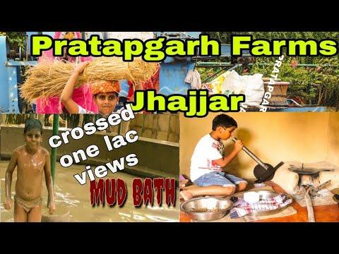 Best Delhi weekend Getaways| Pratapgarh Farms | Jhajjar |video review|village theme farm #travel#fun