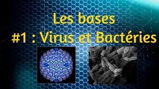 [Les bases expliquées] #1 : Virus et Bactéries