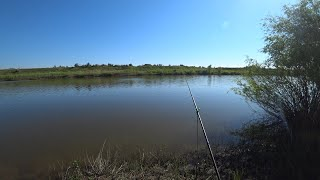 Рыбалка на фидер 2020 Первый выезд на реке