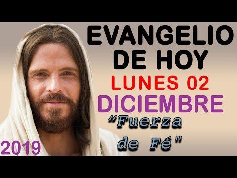 Evangelio de Hoy Lunes 02 de Diciembre de 2019   REFLEXIÓN   Red Catolica