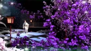 坂本冬美 - 夜桜お七