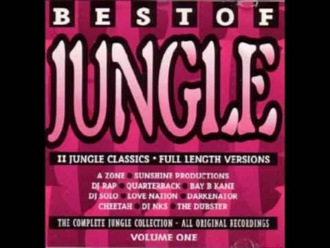 Best Of Jungle Volume One