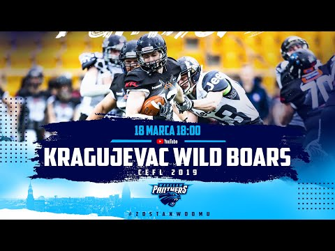 Panthers Wrocaw  -  Kragujevac Wild Boars (CEFL 2019)  Relive