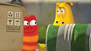 LARVA - HARD TO FIND | Cartoon Movie | Cartoons For Children | Larva Cartoon | LARVA Official