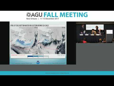 2017 Fall Meeting Press Conference: Arctic Report Card 2017