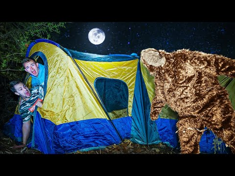 24 HOUR FOREST CAMPING CHALLENGE!