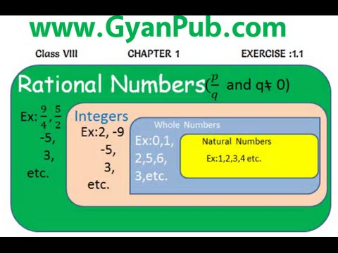 NCERT Solutions for Class 8 Maths Chapter 1 Rational Numbers Ex 1 1 Q 3 i