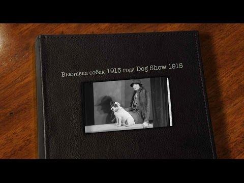 Выставка собак 1915 года