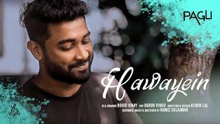 Gambar cover Hawayein - (Pagli cover) | Anushka |Shah Rukh| Pritam | Arijit Singh