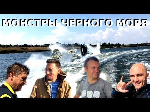 Монстры черного моря!  Monsters Of The Black Sea!