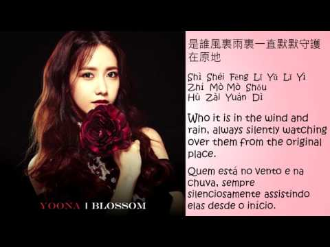 Yoona - A Little Happiness. Legendado/Tradução (PT-BR/English Lyrics)