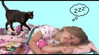 Кошка мешает смотреть сон про детскую площадку.