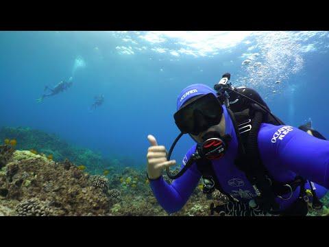Shore Diving the Big Island Hawaii