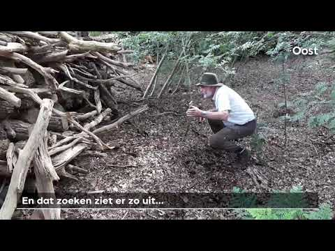 Moeder-otter Doodgereden, Help Mee Haar Baby's Te Vinden | RTV Oost