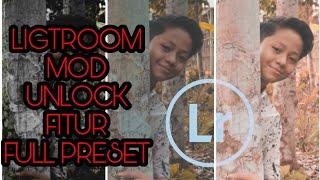Mod preset lightroom video clip