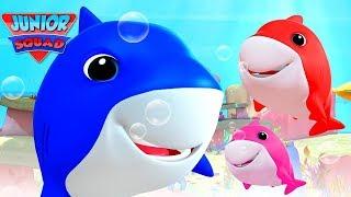 Baby shark, Humpty dumpty, Wheels on the bus, Five little babies, Finger family - Nursery Rhymes