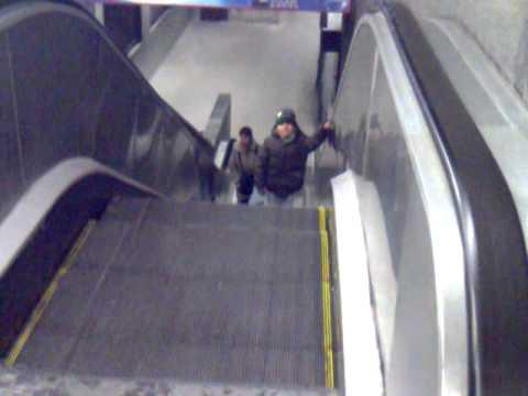 anthony escalera movil