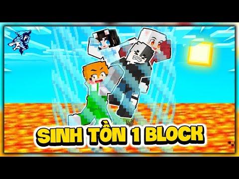 Minecraft Nhưng Sinh Tồn 1 Block Siêu Hài Cùng Hero Team