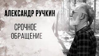 Официальное обращение Александра Ручкина 14.11.19