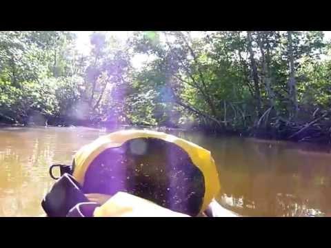 Everglade kayak trip september 2009-2010