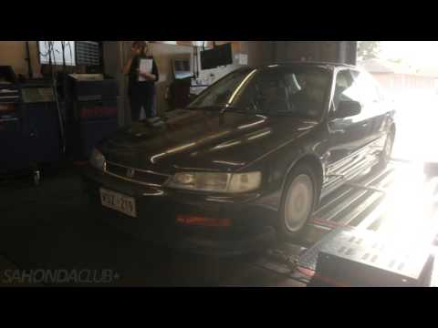 SA Honda Club Dyno Day #2 - Gene Budel : CD5 Accord