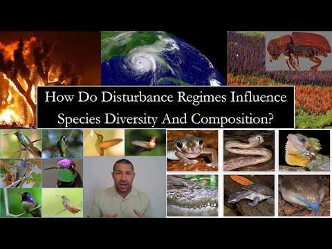 5_3 Community Ecology: Ecological Disturbance