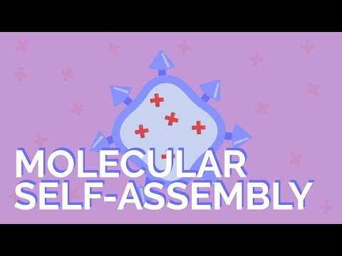 What is molecular self-assembly?