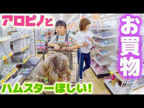 ホームセンターでお買物♪ペットグッズや小動物ペットコーナー見て「ハムスターほしい!」→パパの反応は?