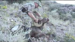 Bryan Harlan New Mexico Raffle Sheep Tag Hunt Video
