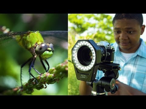 Top 7 Macro Photography Accessories From Fotodiox