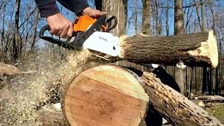 STIHL Chainsaw MS 180  cbe CUTTING!