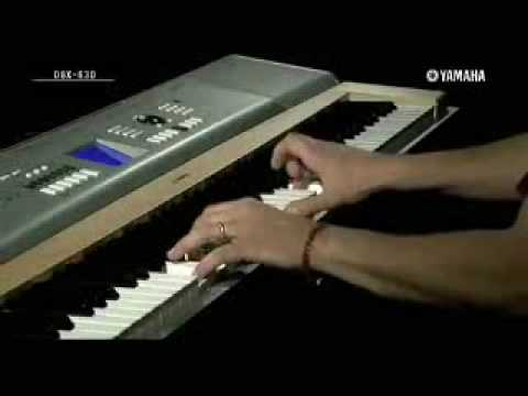 Roland Rp Vs Yamaha Dgx