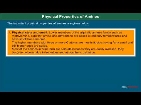 Class 12 Chemistry - Physical Properties Of Amines Video