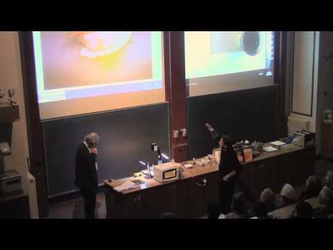 Molecular Gastronomy: Hervé This and Raymond Blanc