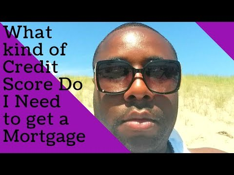 Average Credit Score Needed to Buy a House - 2019 Stop Renting!!!