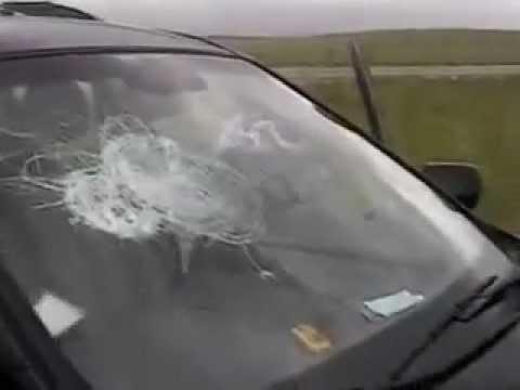 Softball-sized hail pummels cars, breaks windows in North Texas ...