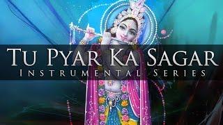 Instrumental - Tu Pyar Ka Sagar Hai (Sitar, Flute & Santoor)
