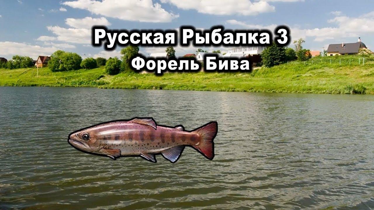 русская рыбалка 3 рыбхоз озерная форель квест