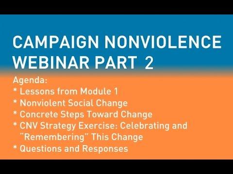 Campaign Nonviolence Webinar May 19, 2015 - Part 2