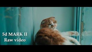 5d mark ii raw video test cinematic look