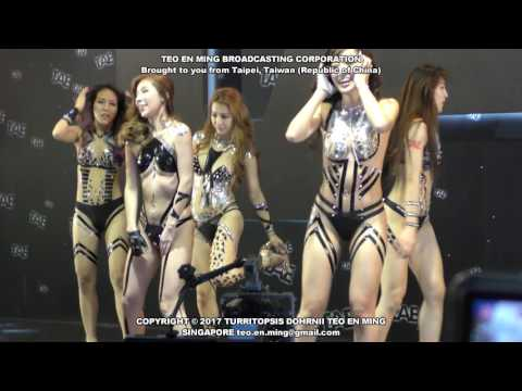 Taiwan Adult Expo 2017 (Sunday) TAE台灣成人博覽會 2017 (星期日) thumbnail