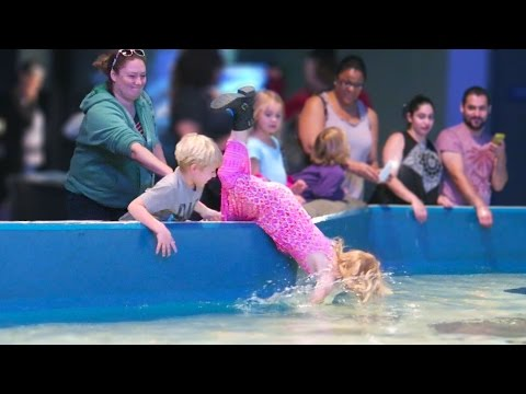 Girl Falls Into Aquarium