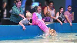 Girl Falls Into Aquarium