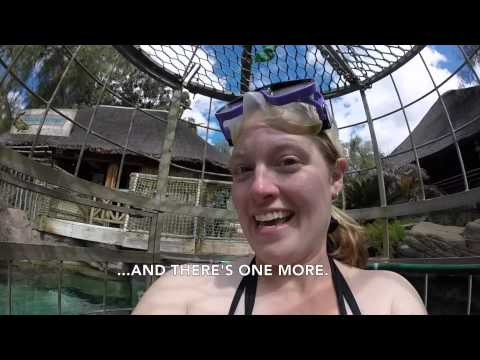 Croc Cage Diving at Cango Wildlife Ranch in Oudtshoorn, South Africa